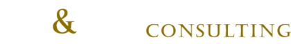 Koenig & Partner Consulting